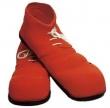 Zapatos y cubrebotas