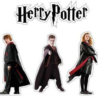 Fiesta mago Harry Potter
