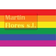 Bandera orgullo arco iris grande