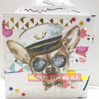 Álbum fotos mascota s
