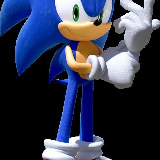 Fiesta video juego Sonic